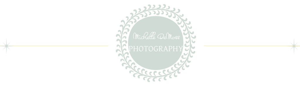 Michelle DeMoss Photography logo